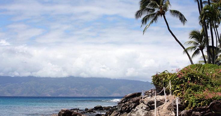 A melhor época para comprar passagens aéreas para o Havaí. A beleza das ilhas havaianas atrai turistas do mundo todo, o ano inteiro. Mas nem todos podem ter férias de primeira-classe. A passagem pode ser uma das partes mais caras de uma viagem ao Havaí, porém existe algumas maneiras inteligentes de achar uma cotação relativamente em conta.