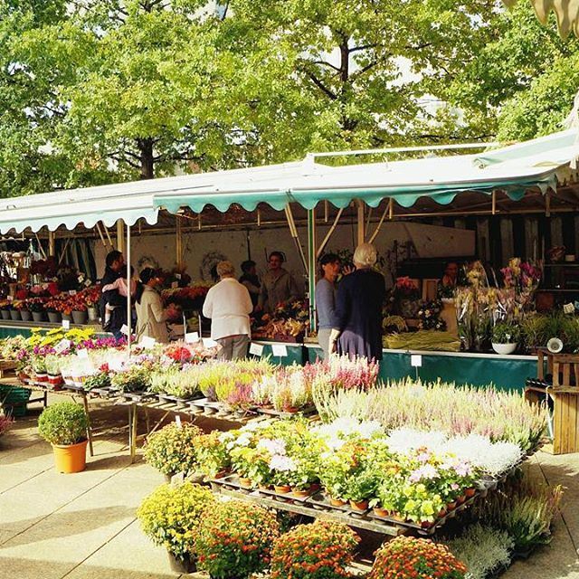 Autumny atmosphere #ulmerwochenmarkt on saturday morning seems like an institution to many of us.  Flanieren auf dem Wochenmarkt ist ein Muss. Die Stimmung ist hervorragend! Un must du samedi matin? Un marché, c'est parti!