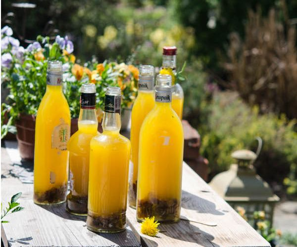 Daw The Cauldron Wizard Recipes for your Body and Soul: Nothings as Fine as Dandelion Wine