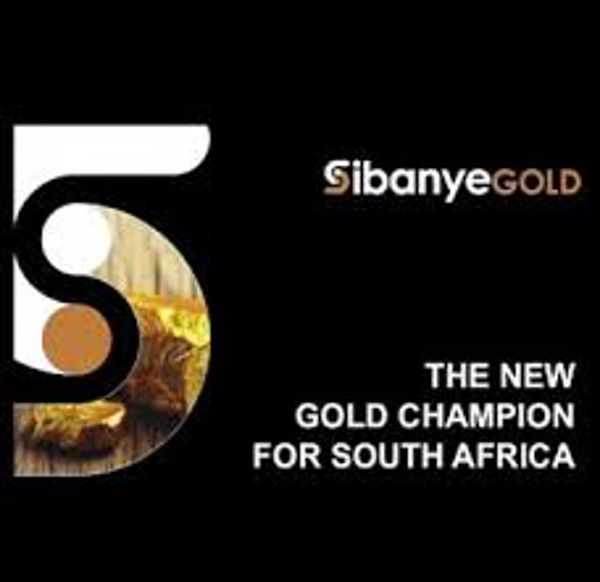 Mining company will not invest further in South Africa