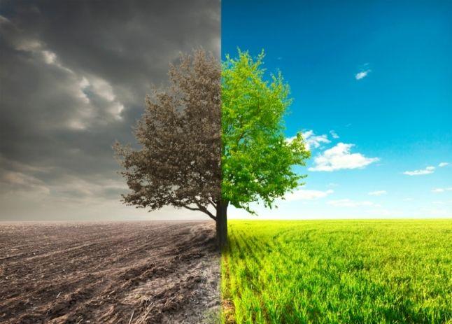 Jak polubić swoje życie nie zmieniając go? - Charaktery - portal psychologiczny