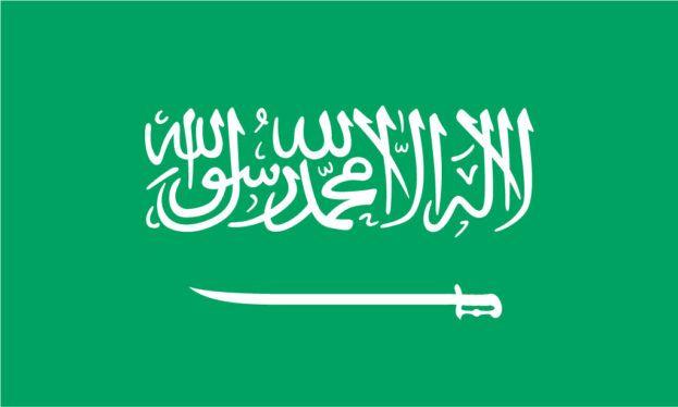 السيفين والنخلة شعار المملكة العربية السعودية السيفين والنخلة سيفين ونخله