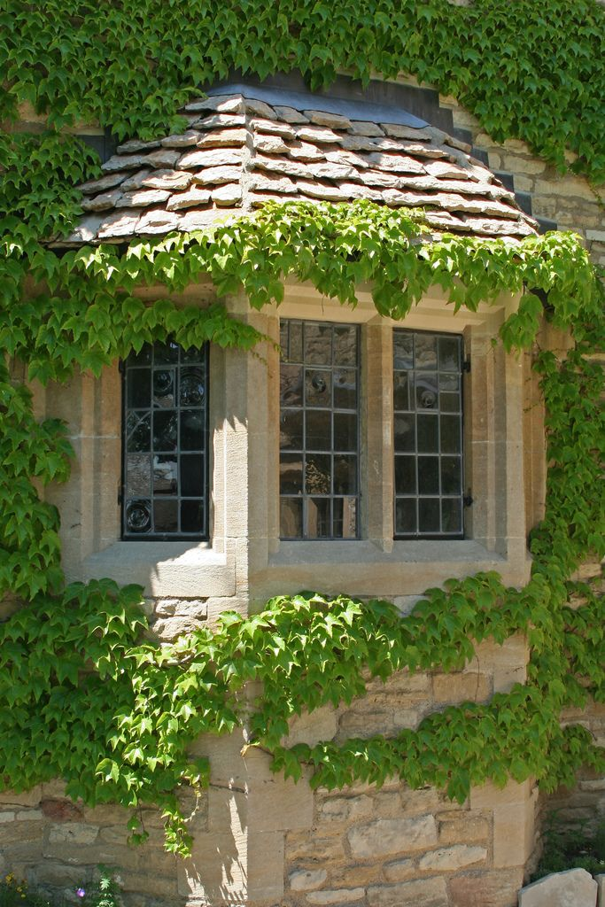 130 Best Ideas About Charming Ivy Cottage On Pinterest