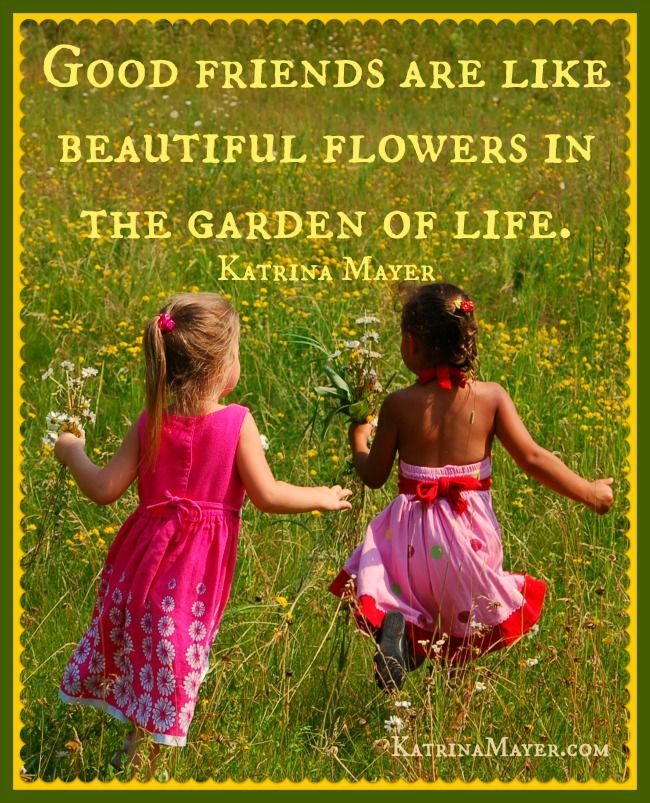 Good Friends Are Like Beautiful Flowers In The Garden Of Life Katrina Mayer