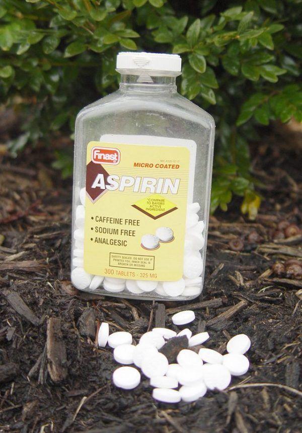 Todo el mundo conoce la aspirina como medicamento centenario que es. Usada para multitud de dolencias a lo largo de su historia se han ido descubriendo nuevas aplicaciones. Pero tal vez lo que no t…