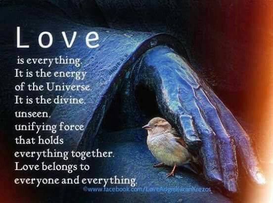✨ Enough said... Love all things, and watch your life transform right in front of your very own eyes. Find the Divine-Given 'Light' within your 'Authentic-Self' and share it to the world ~ Mike LaMonica ❤