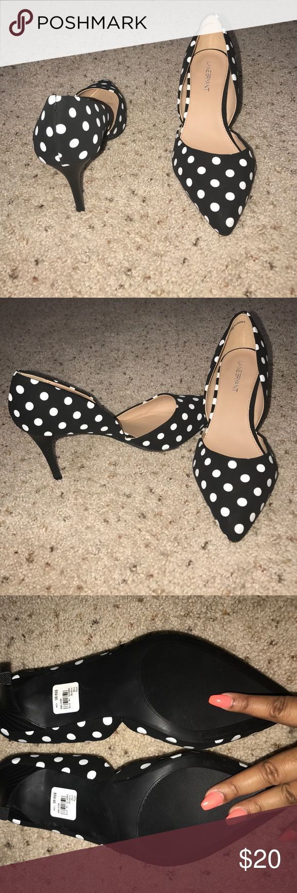 Layne Bryant Polka Dot Heels Brand new black and white pointy toe kitten heel. 10W Lane Bryant Shoes Heels