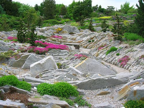 71 best alpine garden images on pinterest | garden ideas, garden