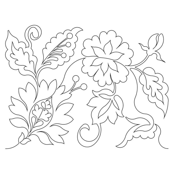 asian lilies flower coloring pages coloring pages