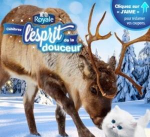 Royale : 80 000 coupons rabais à partir d'AUJOURD'HUI !! - Quebec echantillons gratuits