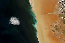 A hydrogen sulfide bloom (green) stretching for about 150km along the coast of Namibia. As oxygen-poor water reaches the coast, bacteria in the organic-matter rich sediment produce hydrogen sulfide which is toxic to fish. (The image is taken from a bird's eye view.)