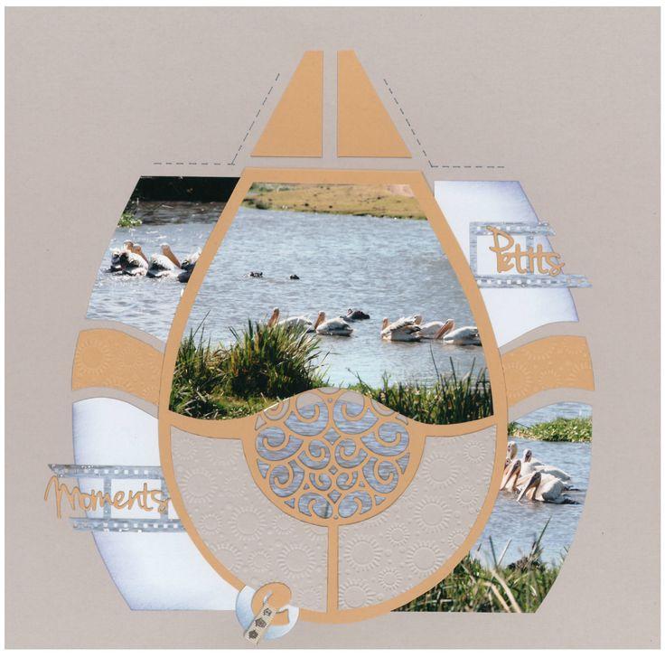 pelicans blancs 1
