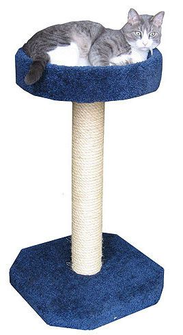 Molly And Friends Handmade SCR/B Sisal Scratching Post With Cat Bed
