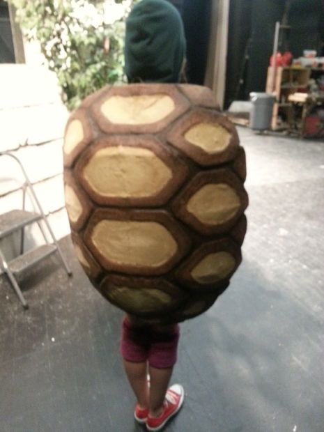 Picture of Tortoise Shell costume for youth theater production