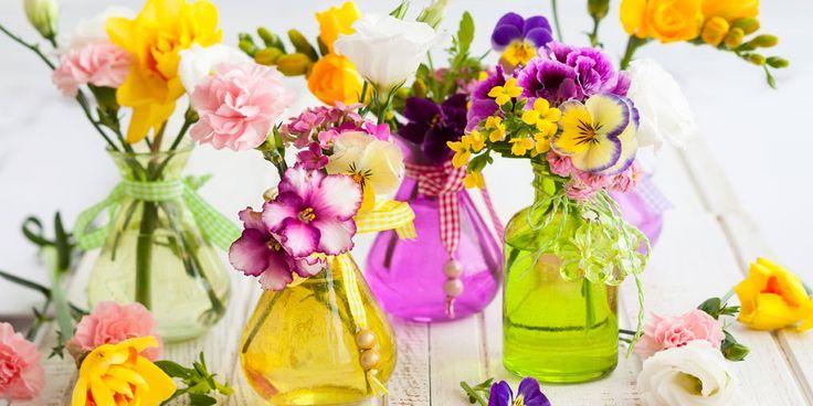 Word jij ook altijd zo blij van een vers boeket bloemen op tafel? Wij wel! Al helemaal als ze ook…