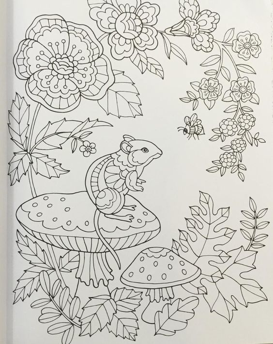 241 best coloring rodent images on Pinterest Animal patterns - best of coloring pages to print animals