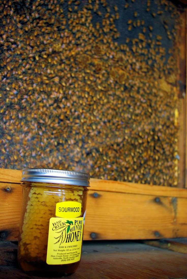 Local sourwood honey in the North Carolina mountains in Asheville NC