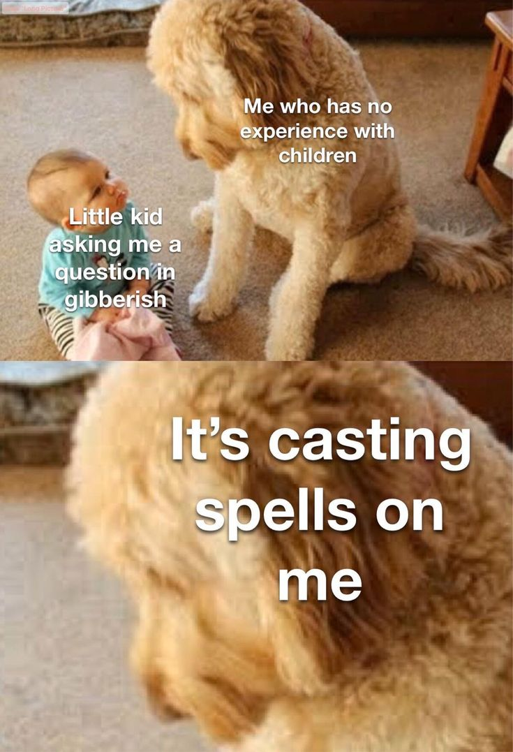 Somethings wrong i can feel it from /r/dndmemes   Really ...