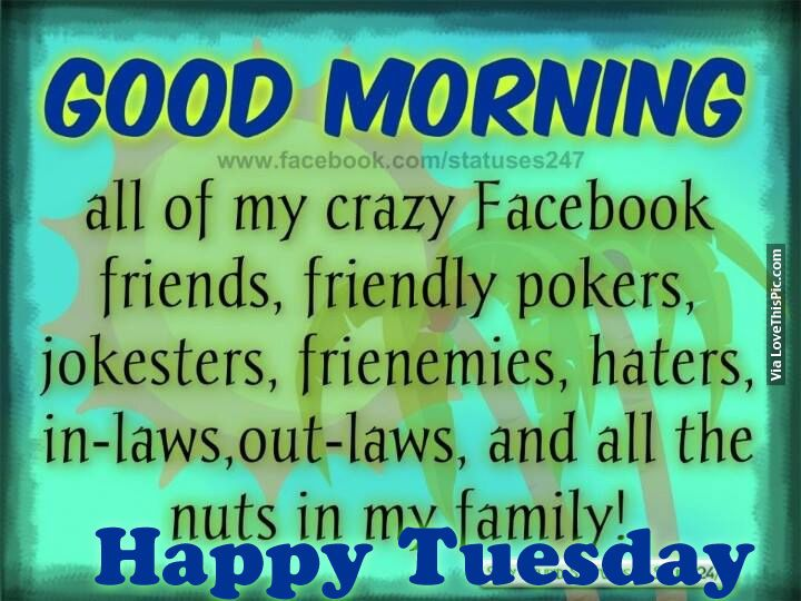 Good Morning To All My Crazy Facebook Friends good morning tuesday tuesday quotes good morning quotes happy tuesday good morning tuesday quotes happy tuesday morning tuesday morning facebook quotes tuesday image quotes happy tuesday good morning