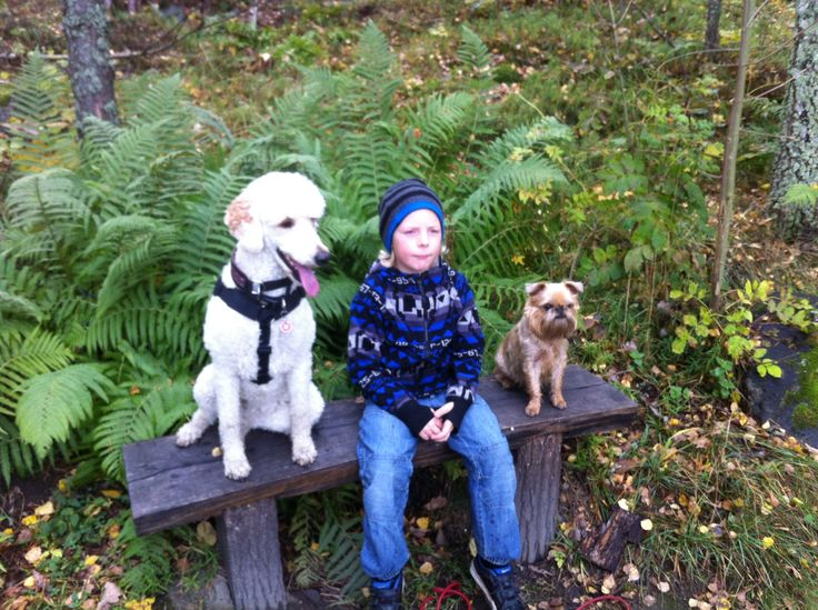 Joel with our 2 dogs Doris and Stella at Djurgården in October 2013