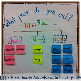 Little Miss Hood's Adventures in Kindergarten: Plants