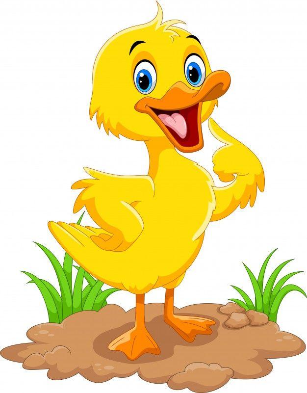 Cute Duck Cartoon Duck Cartoon Cute Animal Illustration Cartoon