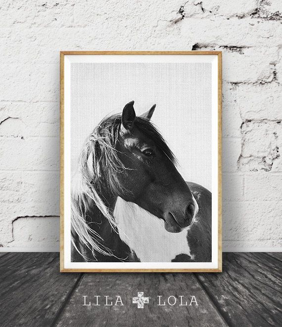 Horse Photo, Black and White Photography, Horse Print Wall Art, Icelandic Horse, Wilderness Print, Equestrian Art, Printable Art,