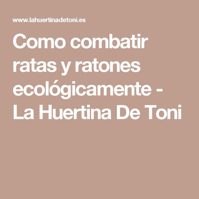 Como combatir ratas y ratones ecológicamente - La Huertina De Toni