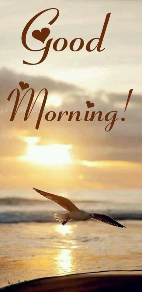 Поздравляем днем, картинки море с надписью доброе утро