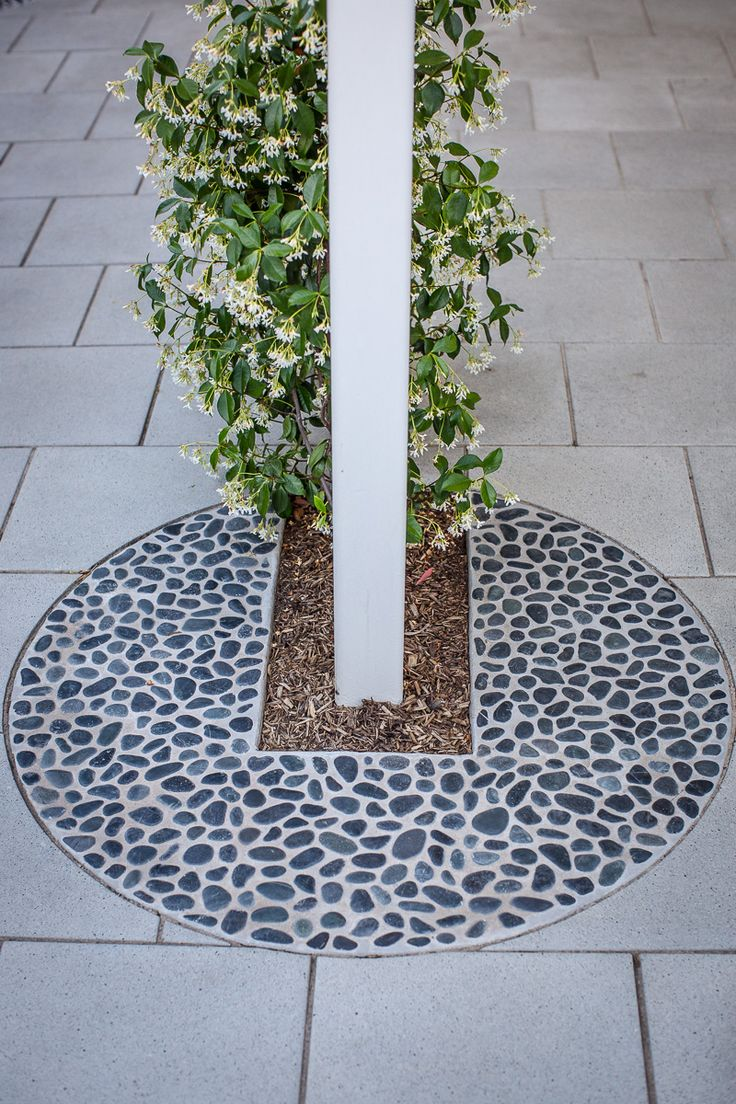 Dulwich residence - Inlaid pebble with Jasmine climber