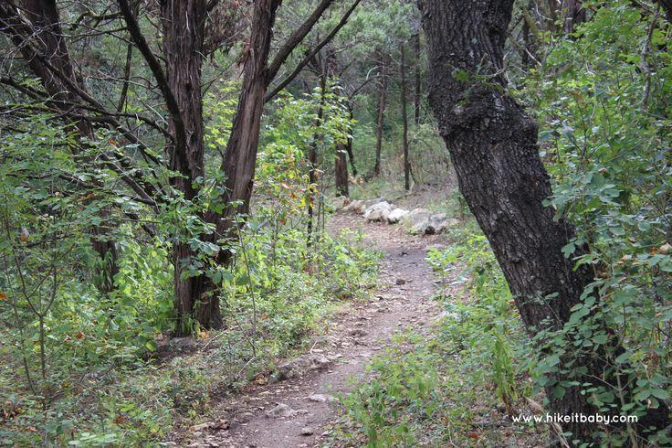 Park Profile: Violet Crown Trail – Hwy 290 Trailhead