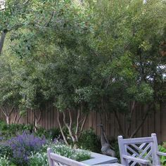 599 Best Backyard Inspirations Images On Pinterest