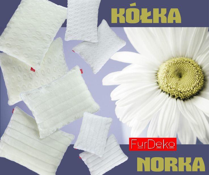 Gładkie i miłe w dotyku futerko poduszek ⭐ KÓŁKA ⭐ oraz ⭐ NORKA ⭐ w subtelnych kolorach ecru oraz białym doskonale sprawdzi się w zimowych domowych aranżacjach ⭐ POLECAMY --> http://bit.ly/1MdZofh ⭐  www.FurDeko.pl