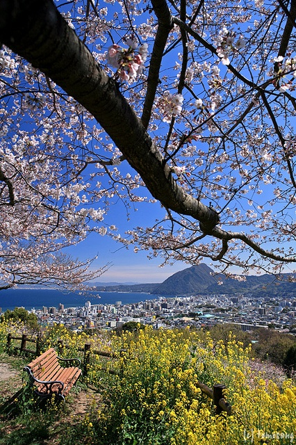 Kyushu, Japan | Explore the amazing Beppu City, home to more than 2,000 natural hot springs.