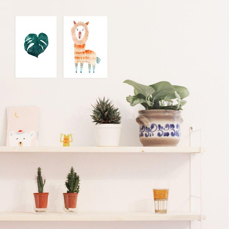 die besten 25 kakteen ideen auf pinterest kaktushauspflanzen sukkulenten und sukkulenten. Black Bedroom Furniture Sets. Home Design Ideas
