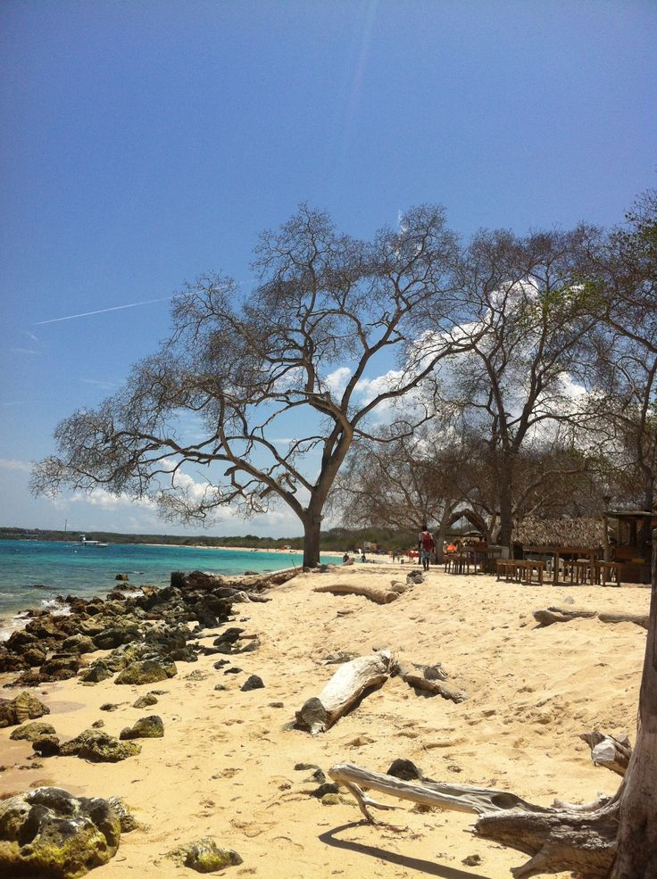 playa blanca bolívar
