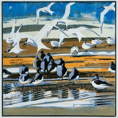 """work I have produced over the past 3 years for a project about bird migration, ""Flight Lines"" - Robert Greenhalf"