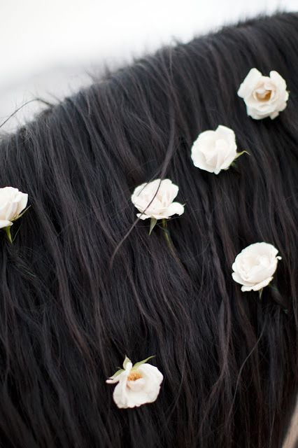wedding horse flowers | honey of a thousand flowers horse hair horses hair and flowers floral ...