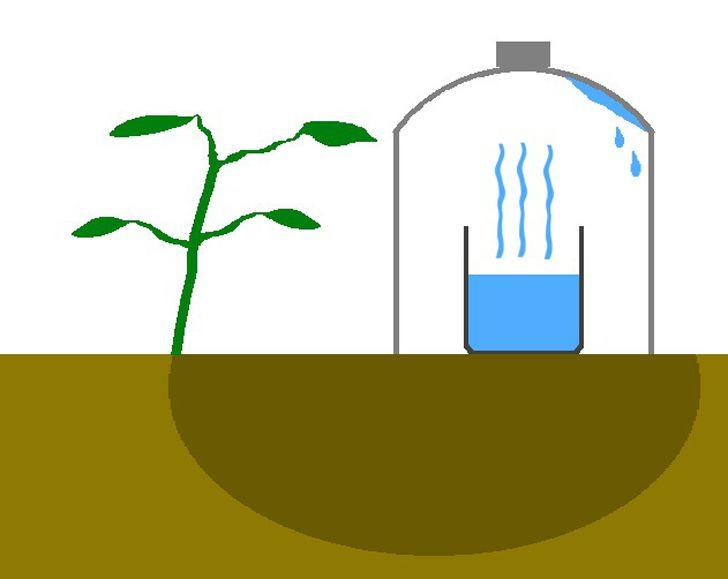 GOTEO SOLAR - Cómo crear tu propio sistema de riego que te ayudará a ahorrar agua. - #PERMACULTURA http://www.upsocl.com/verde/como-crear-tu-propio-sistema-de-riego-que-te-ayudara-a-ahorrar-agua/ AGRICULTURA ECOLÓGICA ORGÁNICA. | HUERO URBANO O GRANJA URBANA.