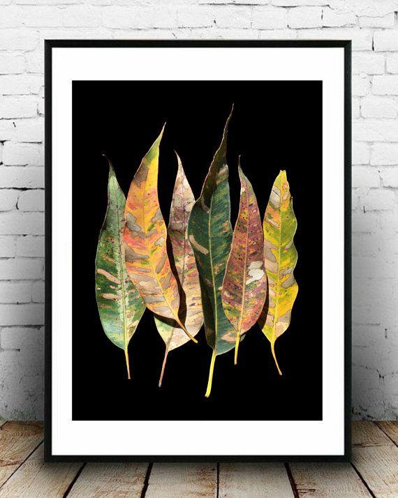 australian eucalyptus leaves leaf print botanical wall art plant art