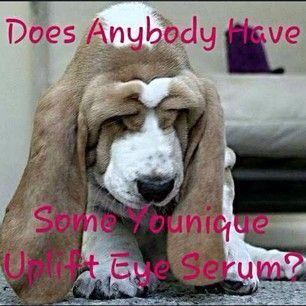 Don't wait until you look like this pooch, order your uplift eye serum today! Truly the best eye serum or cream you have ever tried!! https://m.facebook.com/profile.php?id=553686668104299 or www.butterflylash3d.com