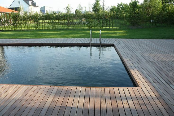 Van Raaijen Hoveniers Almere, Moderne tuin met zwemvijver (PureWtr) en houten vlonder rondom