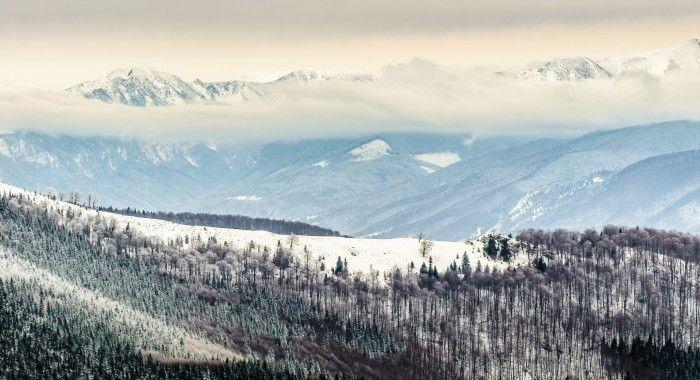Fotografia zilei este realizata de Alexandru Staiu cu aparatul foto Nikon D5100.