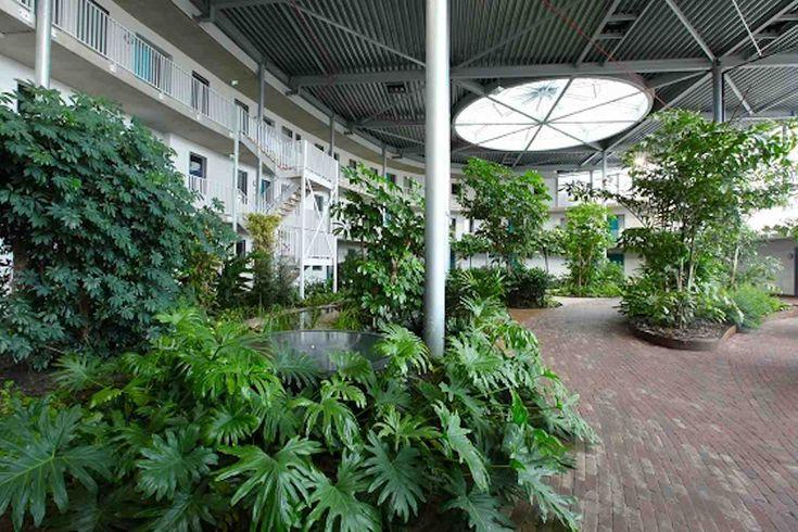 17 beste idee n over groene daken op pinterest groene daken groen gebouw en duurzame architectuur - Ideeen inzendingen ...