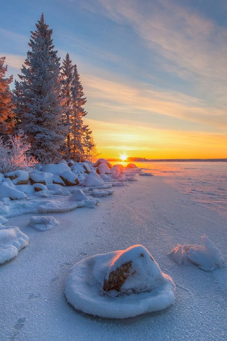 :Norrbotten, SwedenHåkan Johansson