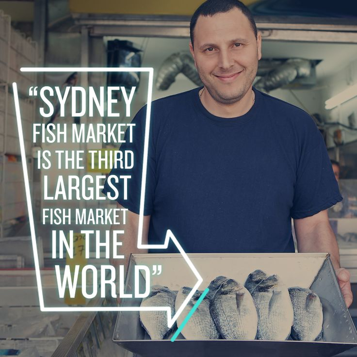 Did You Know Sydney?