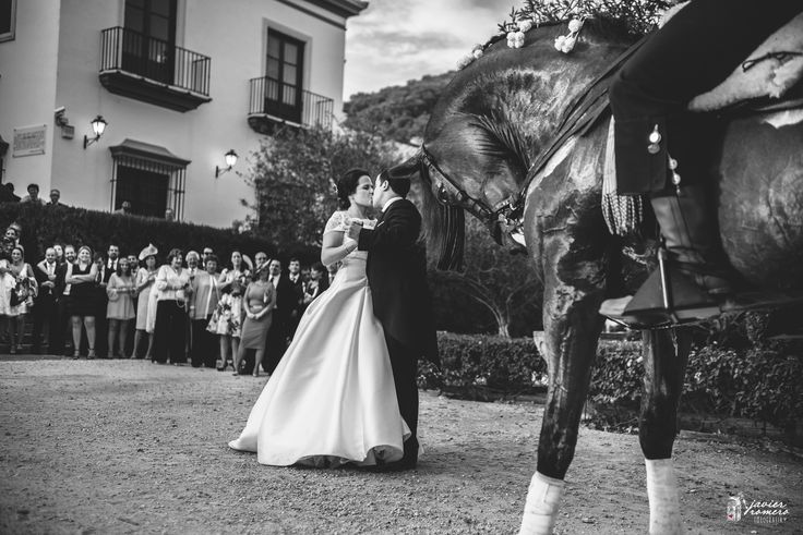 No hay mirada más noble... que la mirada de un caballo, y amor tan profundo como el de esta maravillosa pareja. Uno de los momentos de la Boda de Vero y Manu Javier Romero Fotografía www.javieromerodiaz.com #puertosantamaria #haciendaelpinar #inspiracion #jerez #fotografodebodas #reportajesbodas #weddingphotography #novias #bodascadiz #love