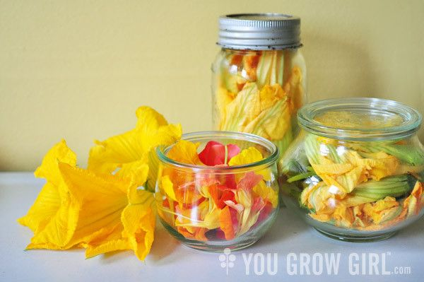 Preserving edible flowers stored in jars. I totally need this! I love making sugar flowers for cake toppers!