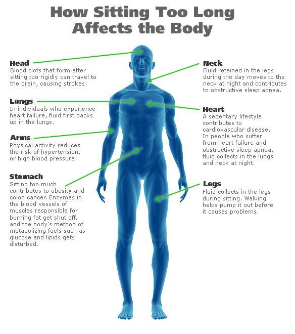 Wie sich zu langes Sitzen auf Ihren Körper auswirkt