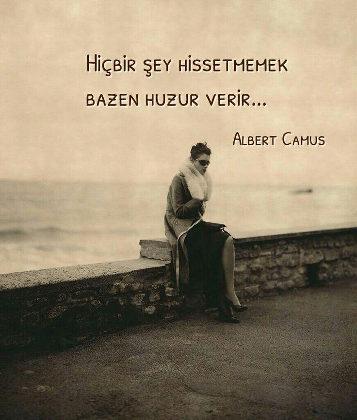 Albert Camus Albert Camus Sozleri Albert Camus Guzel Soz